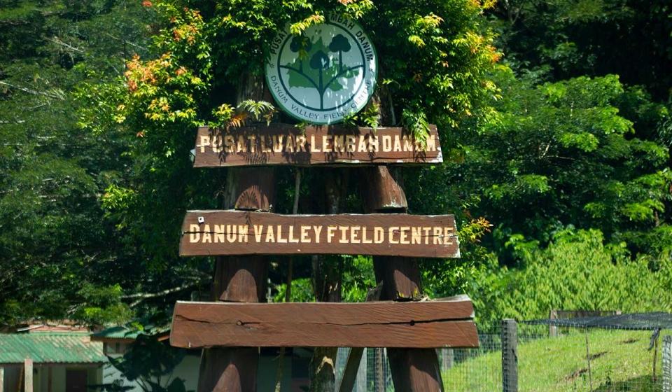 DVFC-campsite-1280-8